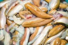 画像4: 昭和の塩辛 100g エコパック3袋 (4)